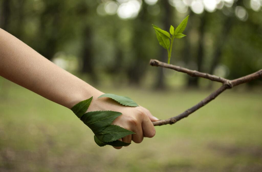 Portiamo a scuola la salute delle piante