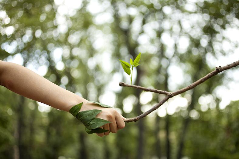 Le Università Lombarde a servizio della salute delle piante